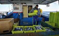 Foro Asturias acusa a los pesqueros cántabros de faenar frente a Llanes