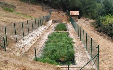 Cantabria prueba con éxito las depuradoras a base de plantas