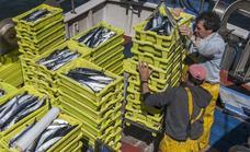 Bruselas baja la cuota de verdel un 20% y Cantabria avisa de que el futuro de la flota «corre peligro»