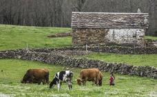 El Gobierno colaborará para mejorar la calidad de vida en los Valles Pasiegos