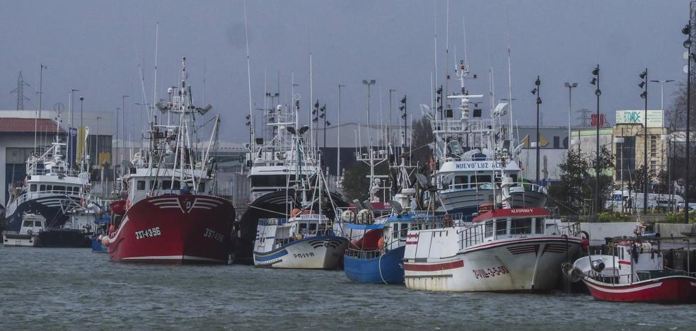 'Bruno' sube los precios del marisco y el pescado por la falta de capturas