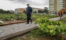La red de huertos urbanos se completa con la entrega de las últimas parcelas