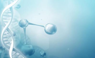Los cambios en la actividad genética pueden determinar la hora de la muerte