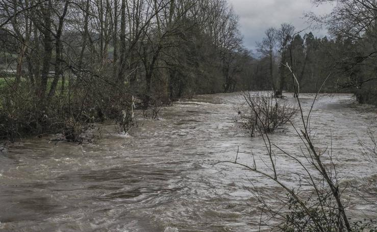 El río Pas, este martes a su paso por Carandía
