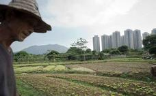 China compra tierras en el extranjero de forma voraz