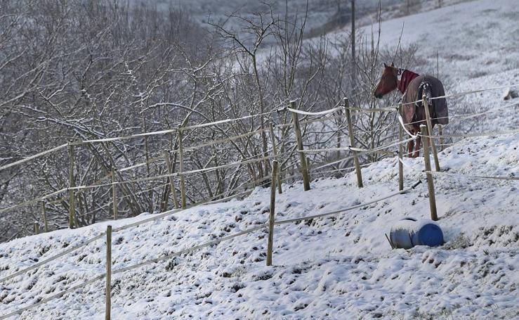 Cantabria, cubierta de nieve