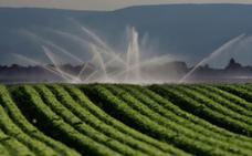 Consiguen reducir el uso del agua en los cultivos sin afectar al rendimiento