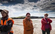 Los mariscadores se plantan y las almejas peligran