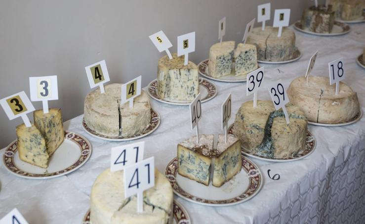 En busca del mejor queso azul