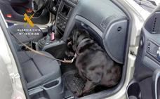La Guardia Civil aborta otra venta de droga, al sorprender en Cartes a tres traficantes con hachís en el coche