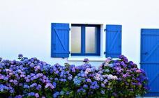 Un recorrido por Europa a través de sus flores