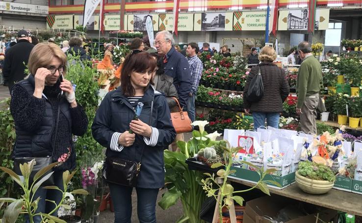 Feria de árboles y plantas en el Mercado de Ganados de Torrelavega