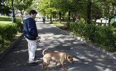 Colectivos de Torrelavega critican el retraso de la ordenanza sobre protección animal