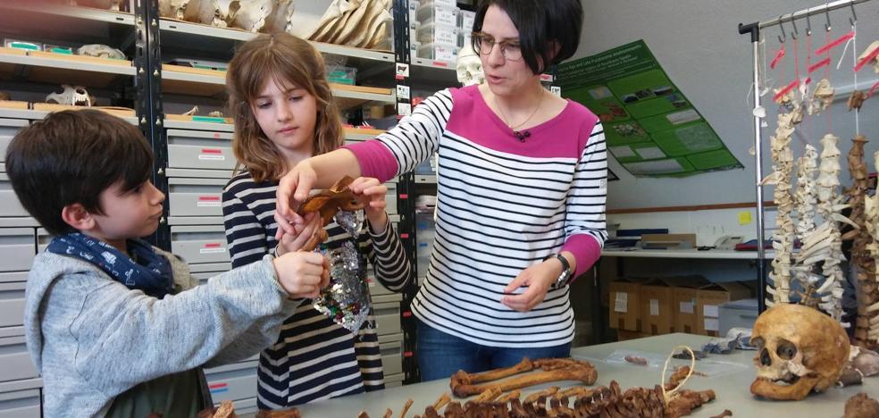 Así era la dieta de los neandertales en Cantabria