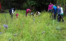 Bárcena abre un jardín para conocer de cerca las mariposas