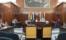 El Pleno reclama al Gobierno cambiar la «mala» Ley de Espectáculos para hacerla «más flexible»