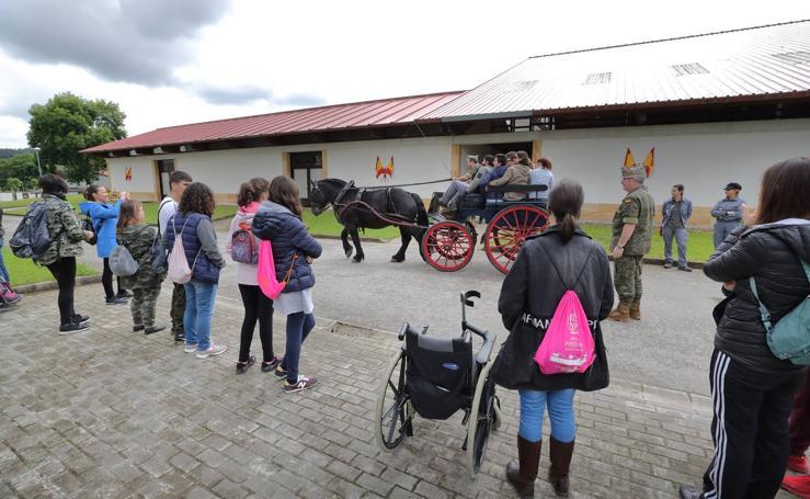 Terapia con los caballos de la Yeguada de Ibio
