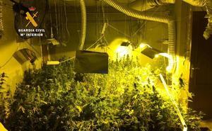 Detenidos dos hombres que tenían una plantación 'indoor' de marihuana en San Miguel de Meruelo