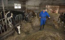 Medio Rural concederá ayudas para el pago del veterinario de explotación