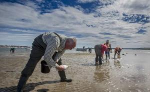 Los mariscadores critican al Gobierno por contratar a Tragsa para la siembra de almejas