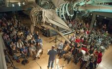 Una veintena de entidades recibirán ayudas para proyectos culturales de Santander
