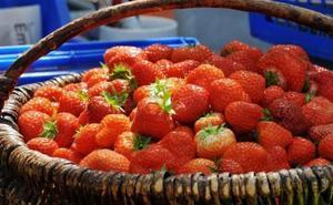 Truco para que tus fresas estén siempre frescas