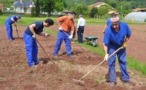Los Corrales pone 60 huertos urbanos a disposición de los parados