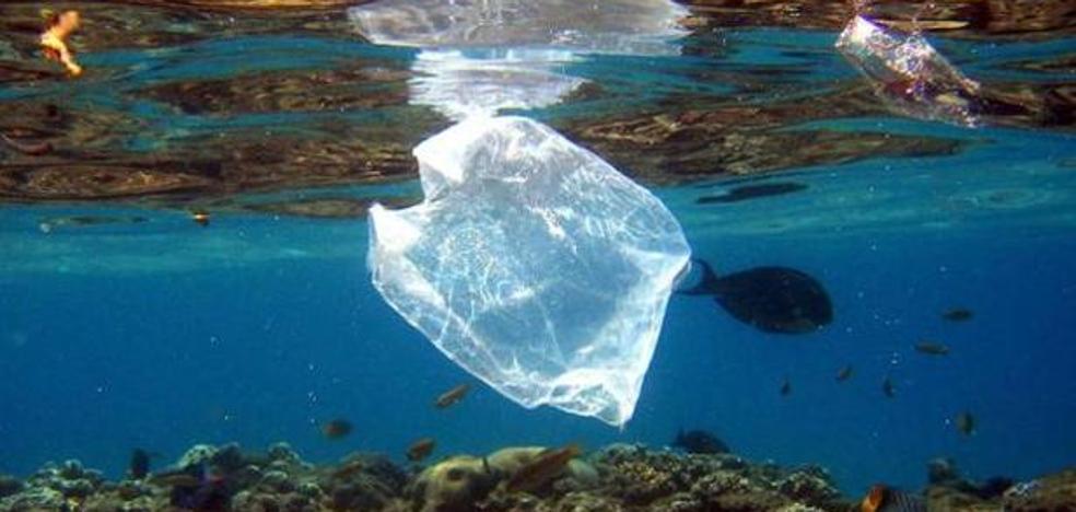 «Los plásticos que no reciclamos acaban en nuestro estómago»