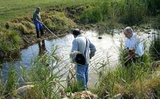 El 90% de los tramos analizados por el Proyecto Ríos presenta residuos y basuras