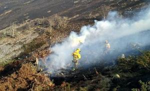 Cantabria ha sufrido este año 369 incendios forestales, la mitad que en los mismos meses de 2017