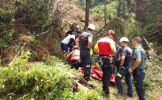 Herido grave un trabajador forestal tras caerle una rama de un árbol en Soba