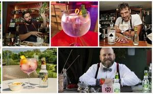 Dónde tomar un buen gin-tonic en Cantabria