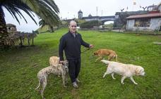 Rapid, el perro rehabilitado en el Dueso