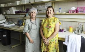 Investigadores cántabros avanzan en un sistema para paliar el dolor neuropático