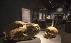 Nuevo taller del Mupac para acercarse al Paleolítico en familia
