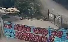 El Seprona recaba pistas para localizar al hombre que mató a un perro en San Román