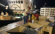La flota cántabra critica al Ministerio por el cambio en la costera del bonito