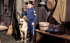 'Rin Tin Tin' y el cabo Rusty