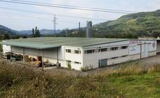 La mayor plantación de marihuana de la historia de Cantabria estaba en San Vicente de Toranzo