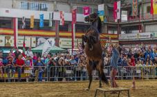 Torrelavega acoge el XIX Concurso Morfológico de Caballos Pura Raza Español