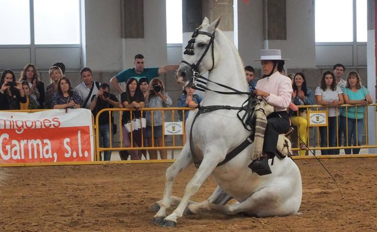 Santos Pereira y Francisco Carrera ganan el concurso de caballos