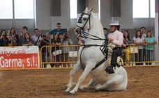 Santos Pereira y Francisco Carrera ganan el concurso de caballos 'Ciudad de Torrelavega'