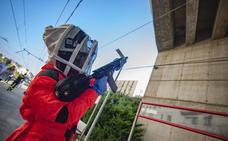 Los bomberos de Camargo innovan en su técnica para atacar a la avispa asiática