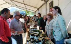 Ocho productores participarán el sábado en VIII Feria de la Miel de Liébana