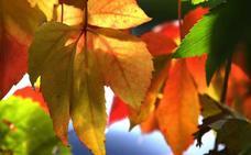 Cantabria saludará este domingo a un otoño más cálido de lo normal