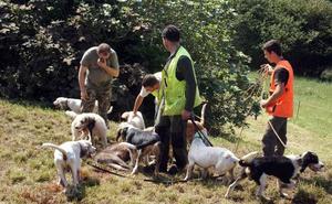 Medio Rural autoriza aguardos de jabalíes en el Parque Natural de Santoña y Ribamontán al Mar