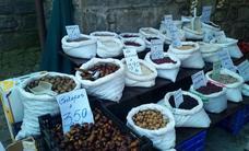 Mercado pasiego en San Roque de Riomiera