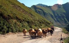 La candidatura a Reserva de la Biosfera de los Valles Pasiegos se abre a municipios burgaleses