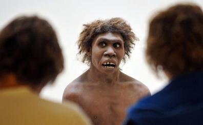 Expertos de la UC barajan si el cambio climático terminó con los neandertales