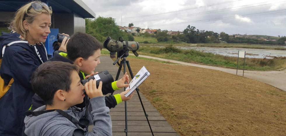 El Astillero convierte el Día Mundial de las Aves en una llamada a la conservación